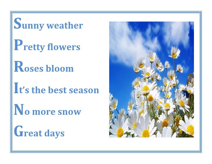 Sunny weatherPretty flowersRoses bloomIt's the best seasonNo more snowGreat days