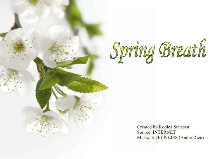 Created by Rodica St ătescu Source:  INTERNET Music: EDELWEISS (Andre Rieu) Spring Breath