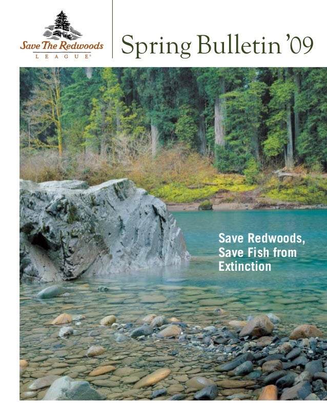 Save Redwoods, Save Fish from Extinction Spring Bulletin'09®