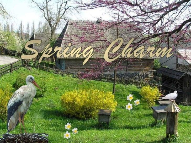 Spring charm