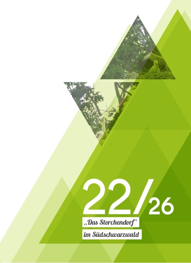 """t t t 22/26 """"Das Storchendorf"""" im Südschwarzwald"""
