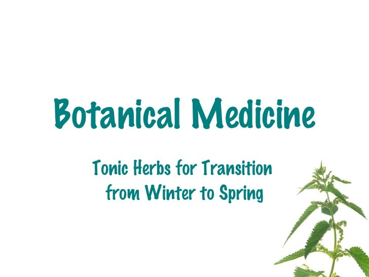 Botanical Medicine Tonic Herbs for Transition  from Winter to Spring