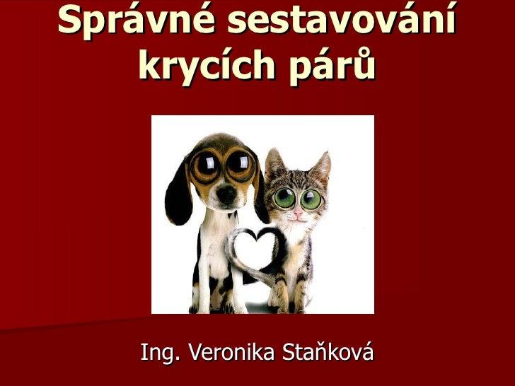 Správné sestavování krycích párů Ing. Veronika Staňková