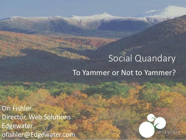 SharePoint 2013 Social - Yammer