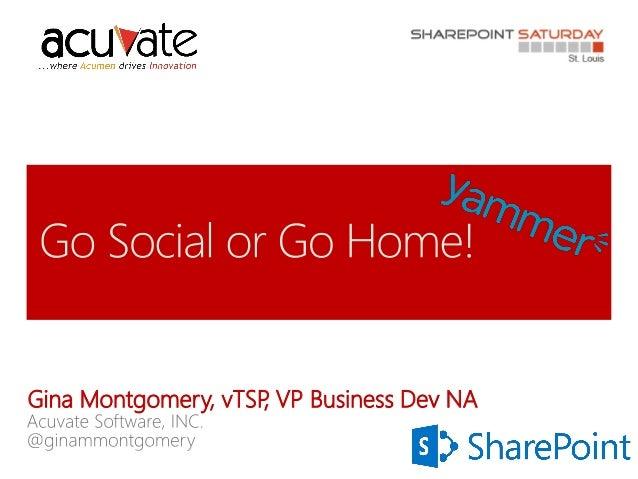 Gina Montgomery, vTSP VP Business Dev NA ,