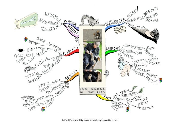 Squirrels in the park   This mind map reflects on a visit to St. James's Park, London, where squirrels ate nuts from my ha...