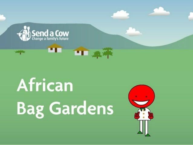 African Bag Gardens
