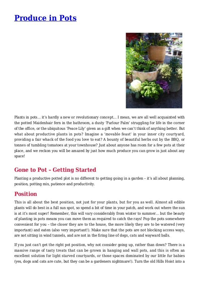 Produce Gardening in Pots