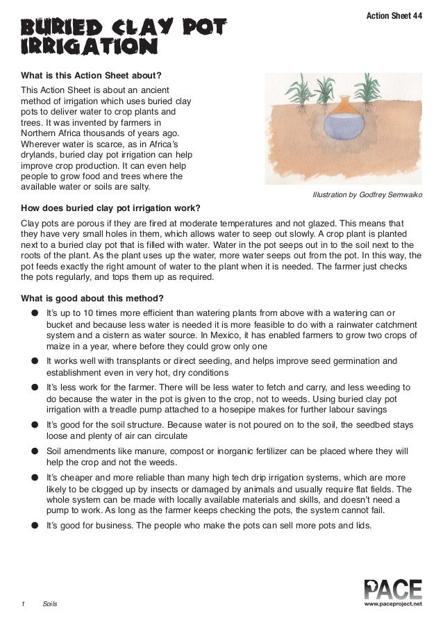 Action Sheet 44 buried clay pot irrigation What is this Action Sheet about? This Action Sheet is about an ancient method o...