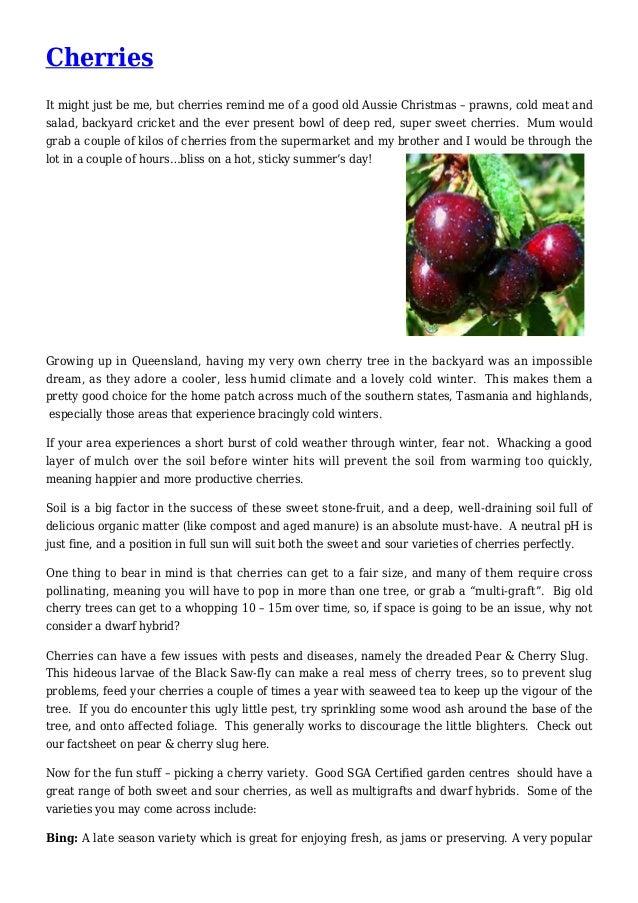 Cherries Gardening