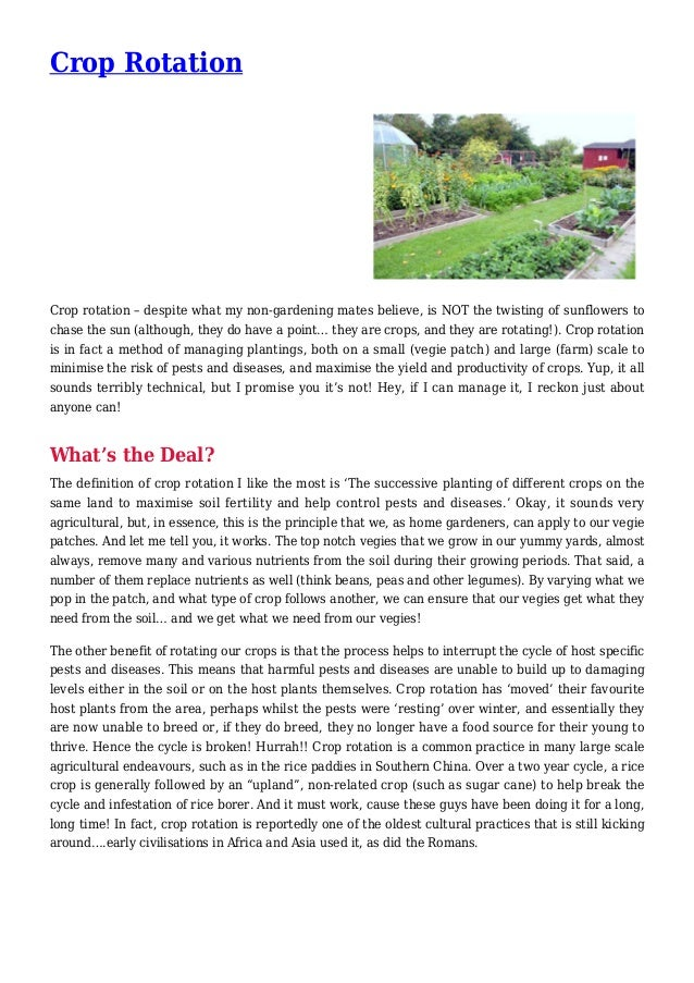 Crop Rotation Crop rotation – despite what my non-gardening mates believe, is NOT the twisting of sunflowers to chase the ...