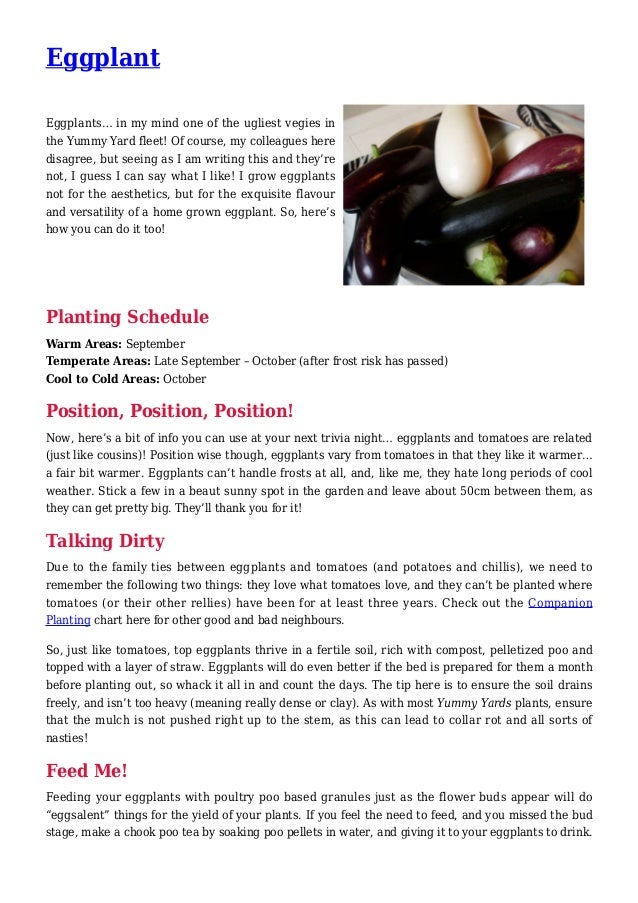 Eggplant Gardening