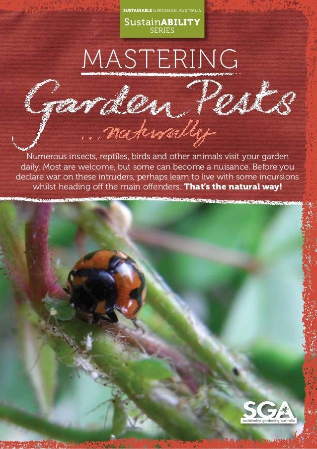 MASTERING SUSTAINABLE GARDENING AUSTRALIA SustainABILITY SERIES Numerous insects, reptiles, birds and other animals visit ...