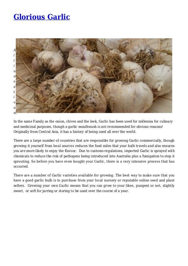 Glorious Garlic in your Garden