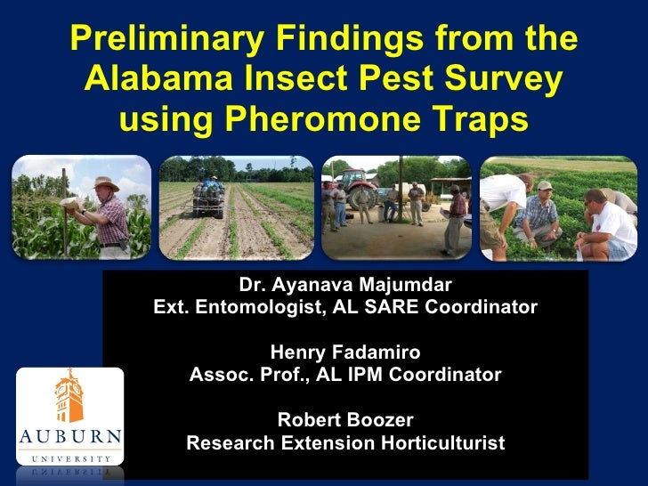 IPM Insect Monitoring Project (SRASHS Conference)