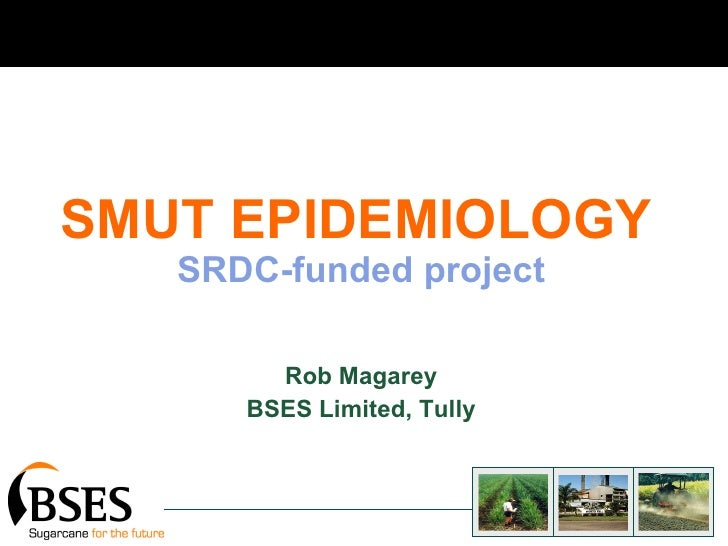 SMUT EPIDEMIOLOGY   SRDC-funded project Rob Magarey BSES Limited, Tully