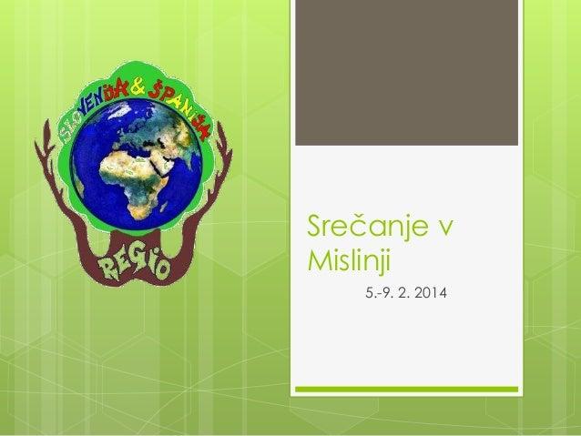 Srečanje v Mislinji 5.-9. 2. 2014