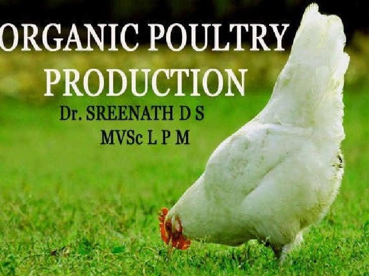 Organic egg production