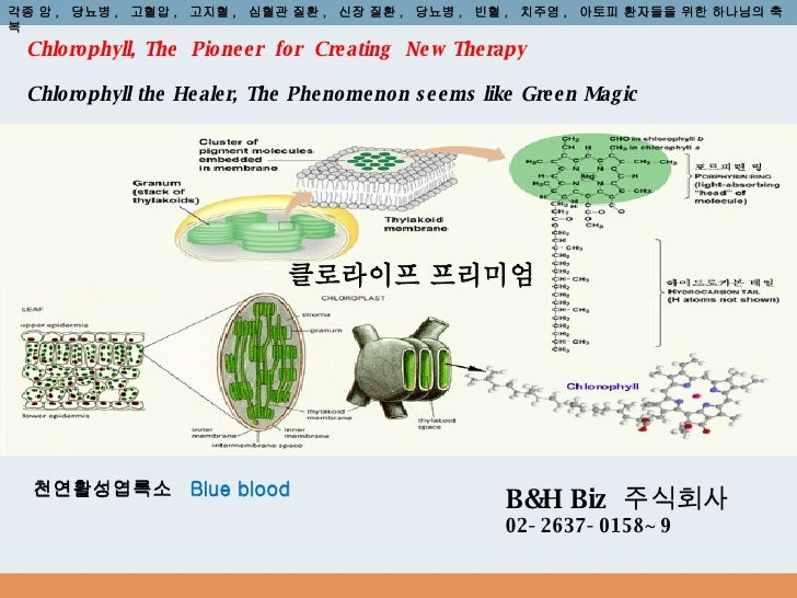 Chlorophyll, The  Pioneer  for  Creating  New Therapy Chlorophyll the Healer, The Phenomenon seems like Green Magic 천연활성엽록...