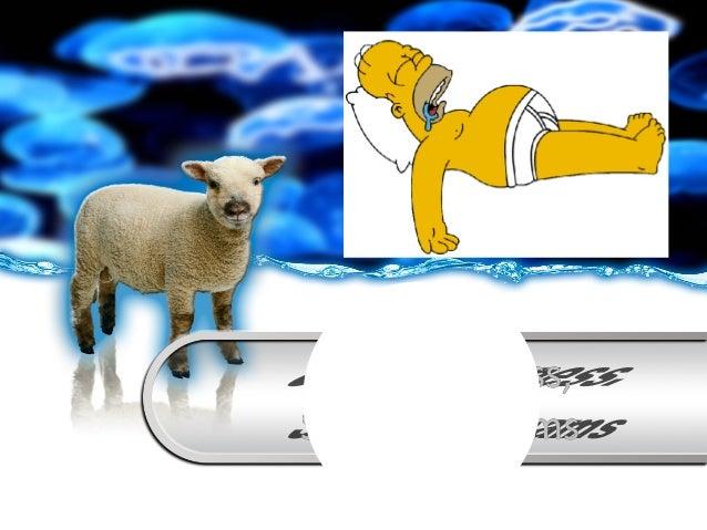 Consciousness, Sleep & Dreams