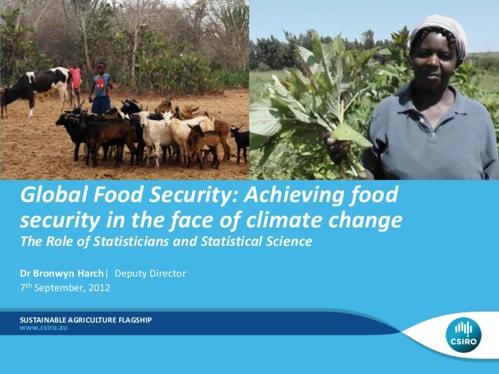 Global Food Security: Achieving foodsecurity in the face of climate changeThe Role of Statisticians and Statistical Scienc...