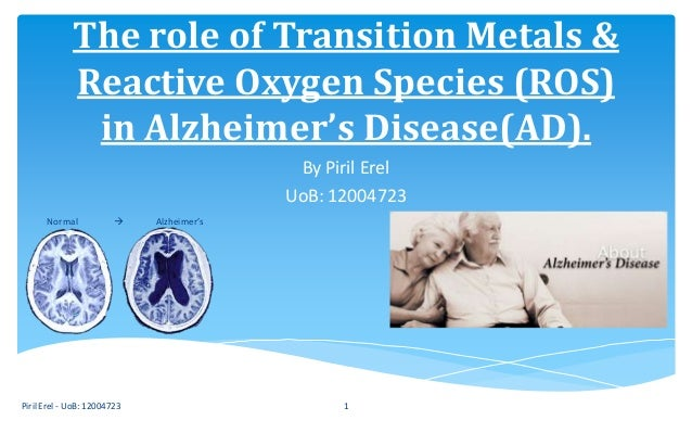 The role of Transition Metals & Reactive Oxygen Species (ROS) in Alzheimer's Disease(AD). By Piril Erel UoB: 12004723 Piri...
