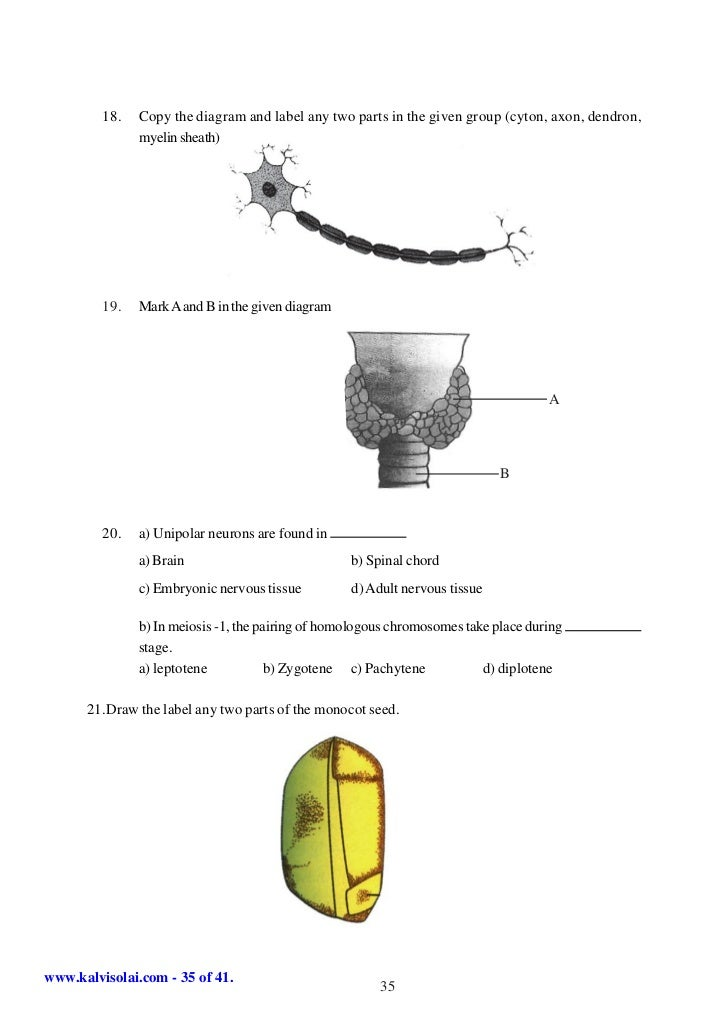 Sslc science-5-model-question-papers-english-medium