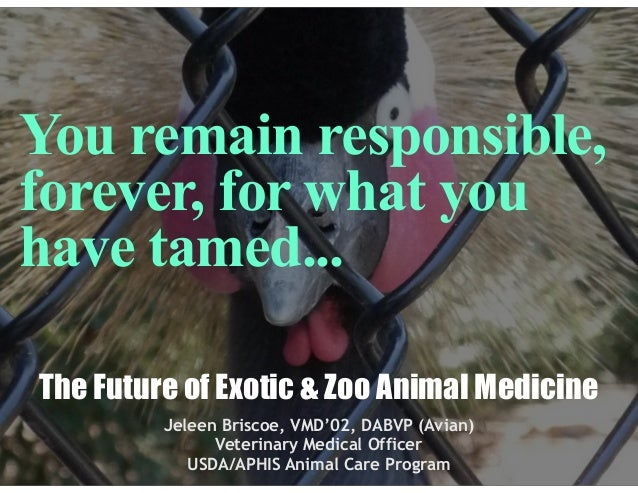 You remain responsible, forever, for what you have tamed... The Future of Exotic & Zoo Animal Medicine Jeleen Briscoe, VMD...