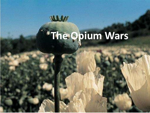 war essay opium war essay