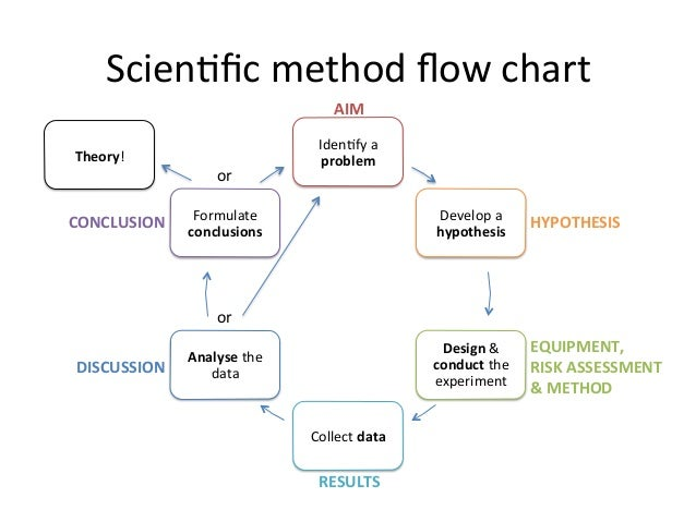 stages of scientific method Scientific method steps - scientific method steps can vary, but the different versions all incorporate the same concepts and principals learn about the scientific method steps.