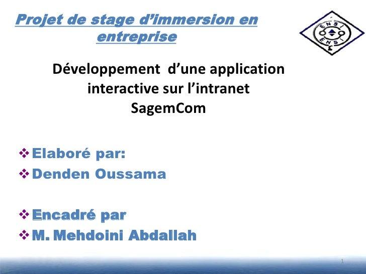 Projet de stage d'immersion en           entreprise    Développement d'une application        interactive sur l'intranet  ...