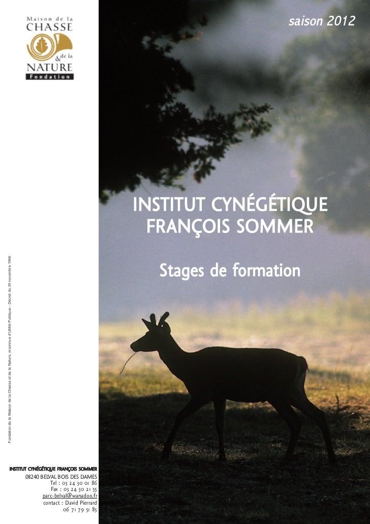 Stages belval 2012