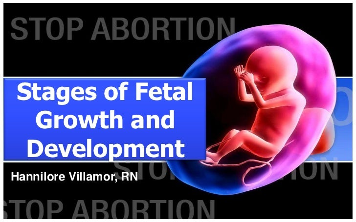 Stages of fetal growth...