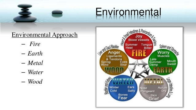approaches to environment education The training of teachers in environmental 14 interdisciplinary approaches for the training of teachers in environmental education was.