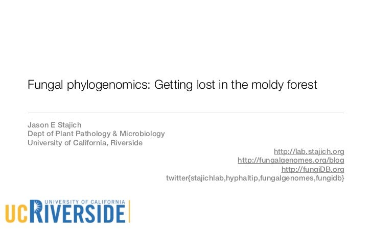 Fungal phylogenomics: Getting lost in the moldy forestJason E StajichDept of Plant Pathology & MicrobiologyUniversity of C...