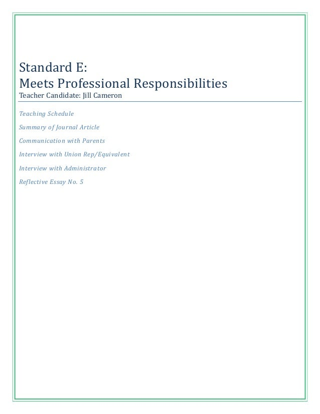 Standard E:Meets Professional ResponsibilitiesTeacher Candidate: Jill CameronTeaching ScheduleSummary of Journal ArticleCo...