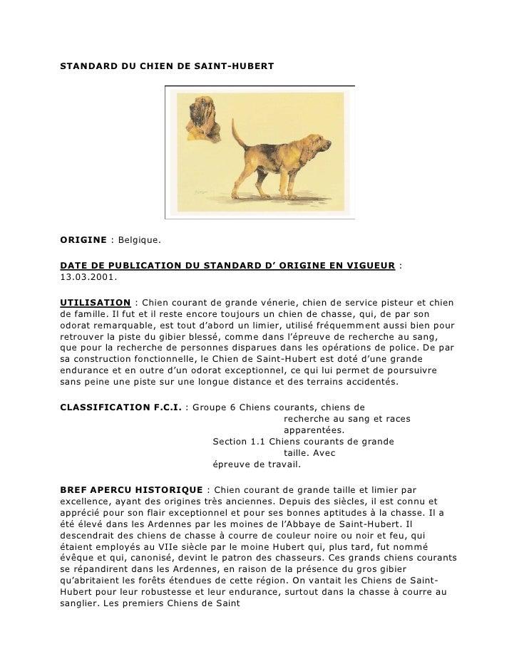 STANDARD DU CHIEN DE SAINT-HUBERTORIGINE : Belgique.DATE DE PUBLICATION DU STANDARD D' ORIGINE EN VIGUEUR :13.03.2001.UTIL...