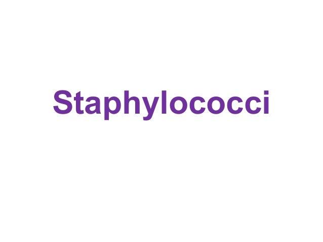 Staphylococci - Prac. Microbiology