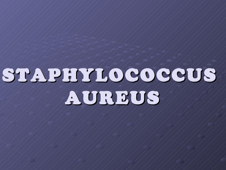 Phd Thesis On Staphylococcus Aureus, Narrative Essay Thesis Statements ...
