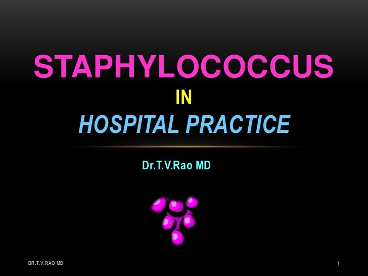 Staphylococcus in Hospital Practice