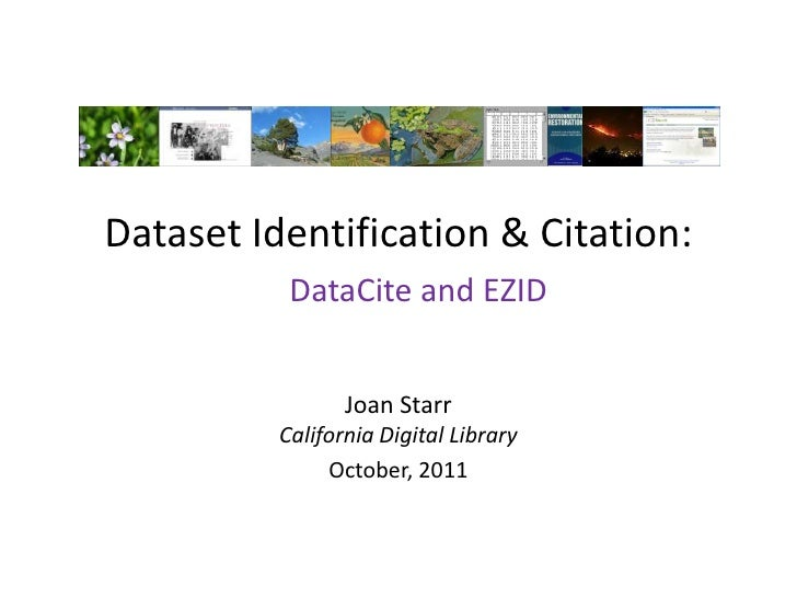 Dataset Identification and Citation