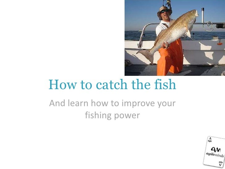 How to catch the fishAnd learn how to improve your        fishing power