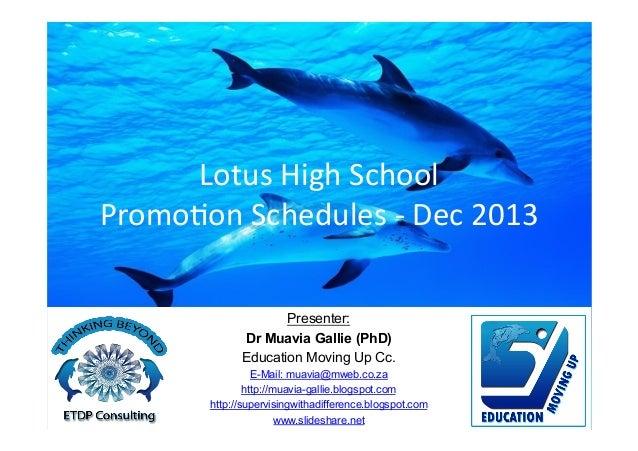 STAS - Risk Management - Promotion Schedules