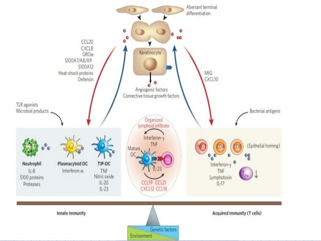 a discussion on the tumor necrosis factor Tumor necrosis factor-α (tnfα) inhibition is effective in the treatment of moderate-to-severe psoriasis we report on 120 patients from the literature.