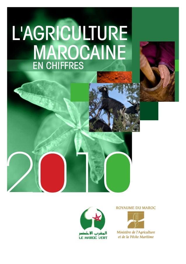 L'AGRICULTURE MAROCAINE EN CHIFFRES
