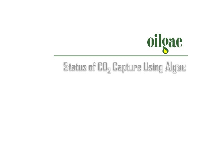 Status Of CO2 Capture Using Algae