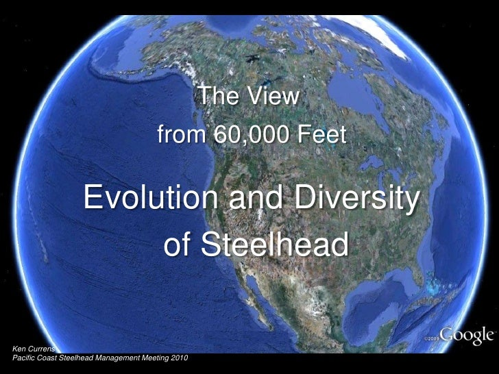 The View <br />from 60,000 Feet<br />Evolution and Diversity<br /> of Steelhead<br />Ken Currens<br />Pacific Coast Steelh...