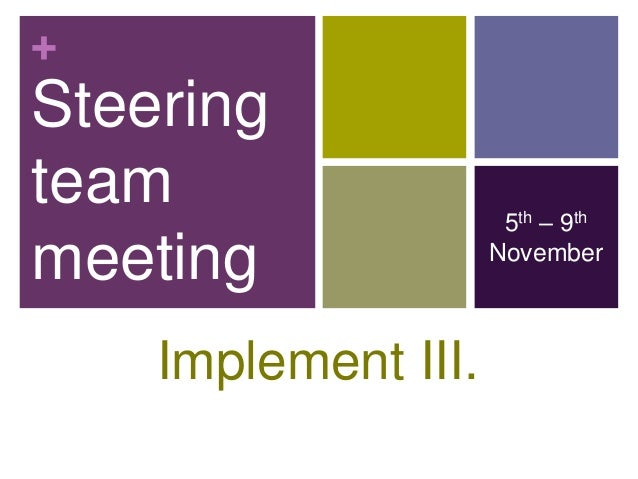 +Steeringteam                  5th – 9thmeeting              November    Implement III.