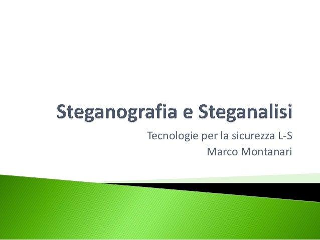 Tecnologie per la sicurezza L-S            Marco Montanari