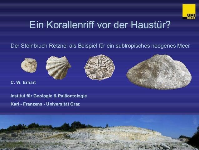 Ein Korallenriff vor der Haustür?  Der Steinbruch Retznei als Beispiel für ein subtropisches neogenes Meer  C. W. Erhart  ...